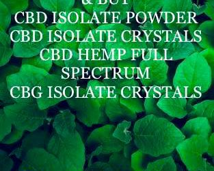 BUY CBD ISOLATE POWDER ONLINE