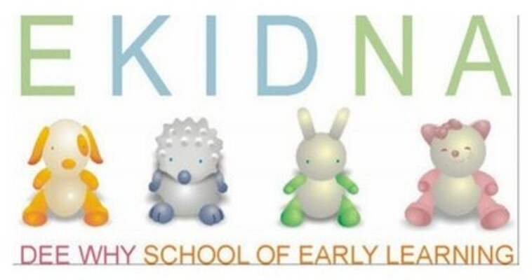 Ekidna – Dee Why School of Early Learning